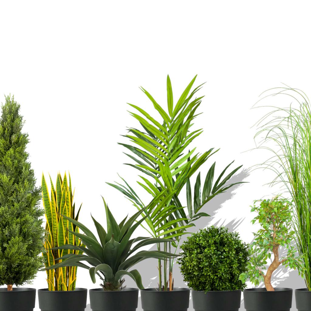 große Auswahl an uv-sicheren Kunstpflanzen