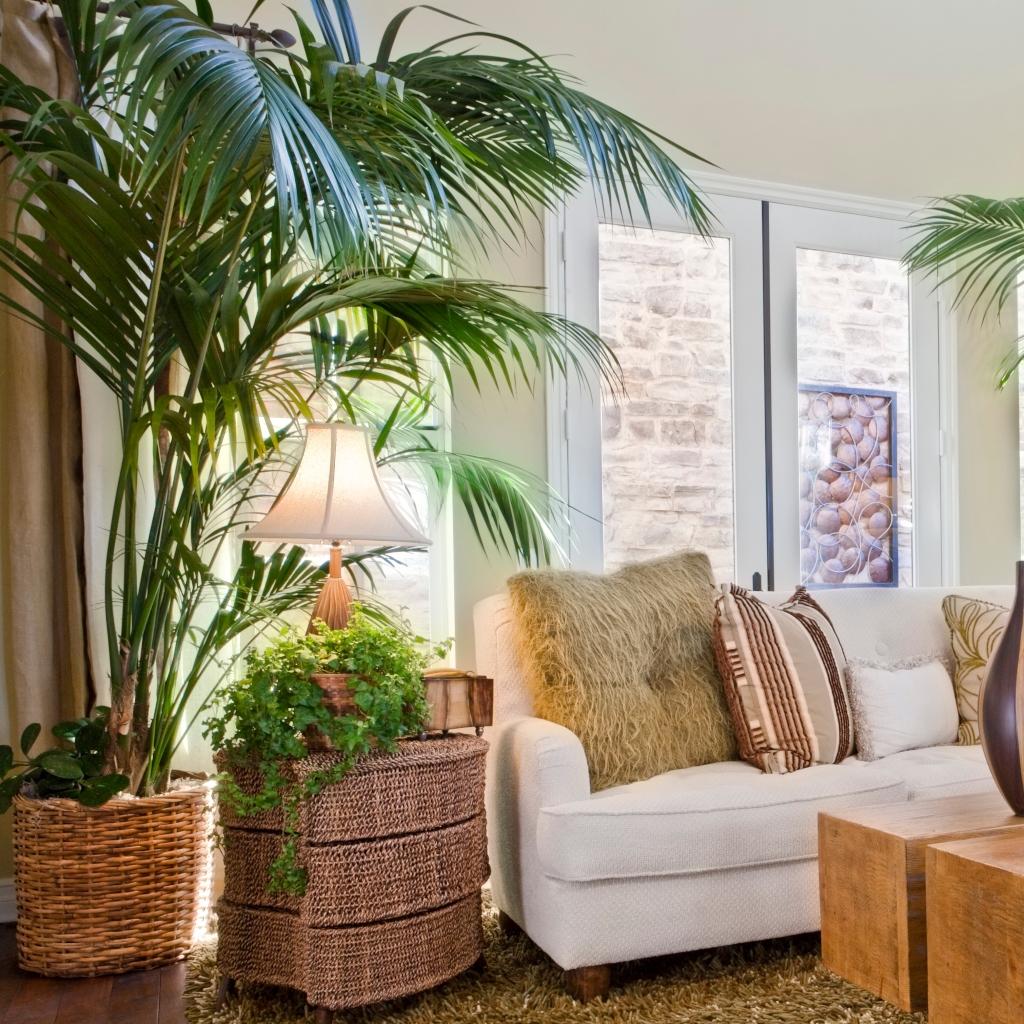 Plantas bietet die höchste Qualität wenn es um Kunstpflanzen und Kunstblumen geht