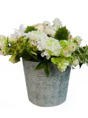 Blumenarrangement, Creme