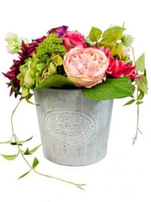 Blumenarrangement, Rosa