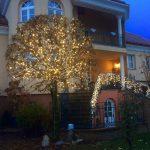 Baumbeleuchtung Privat
