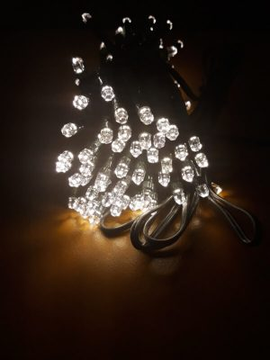 LED Duracharge Detail